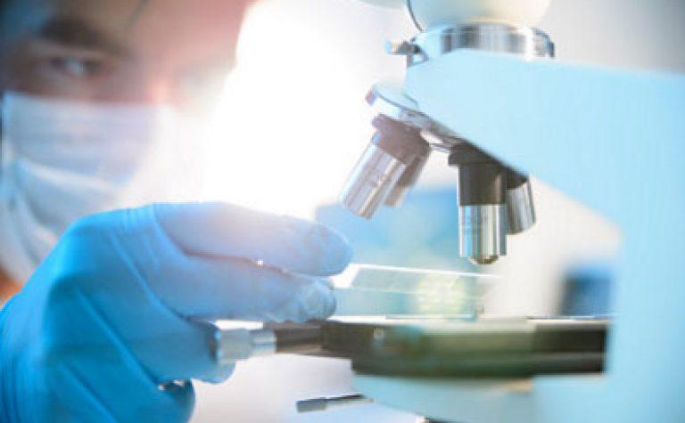 Scientist investigating Wilms' tumour