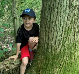Boy in red shorts in tree