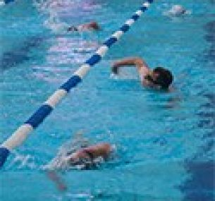 Swimmers in a swimming lane