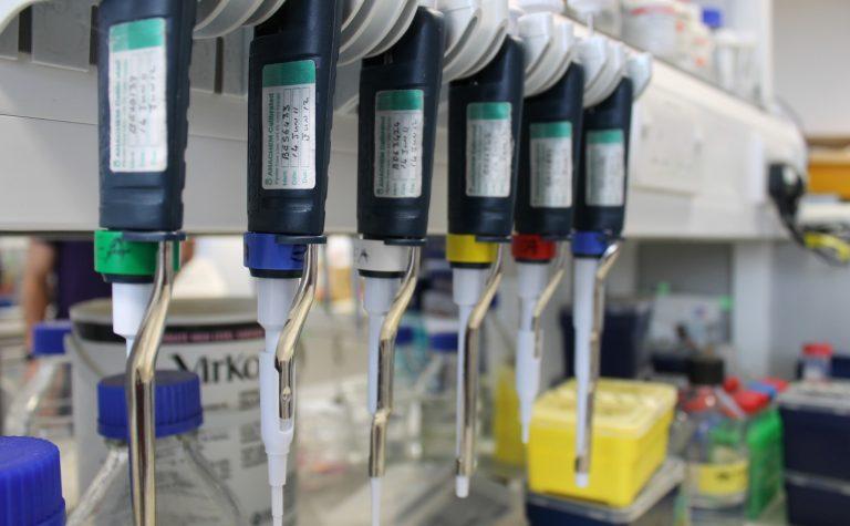pipettes in a laboratory