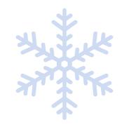 snowflake image