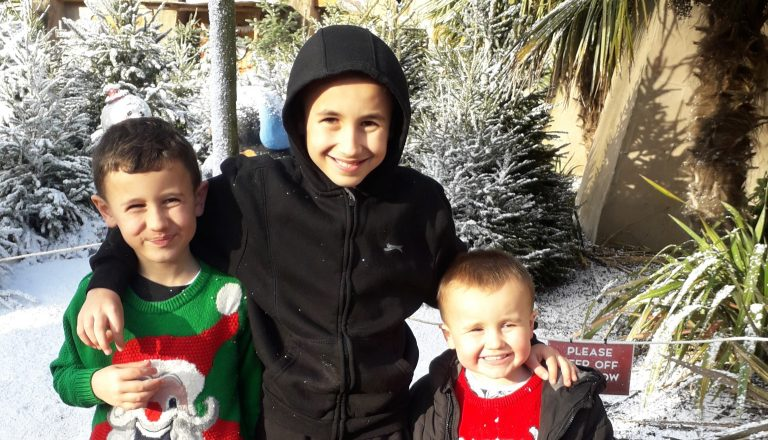 three boys with christmas trees