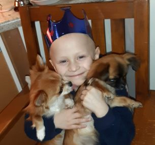 Boy with blue crown and two dogs
