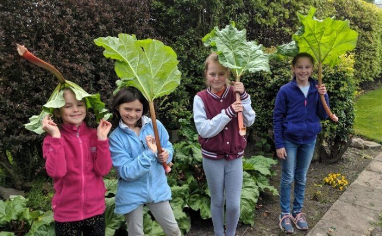 Children enjoying garden