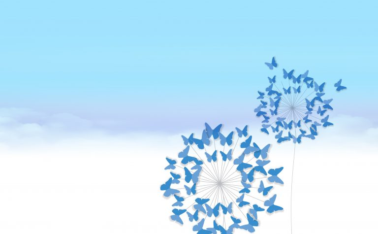 Butterfly backgrounds in memory
